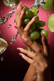 Beautiful hands and nails Stock Image