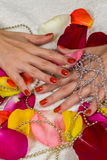 Beautiful hands with a nice manicure Royalty Free Stock Image
