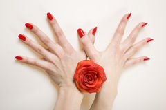 Beautiful hands with perfect red manicure Royalty Free Stock Images