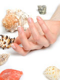 Beautiful hands,spa french manicure,sea shells Stock Image