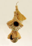 Beautiful handwoven bird nests Stock Images