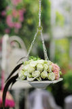 Beautiful hanging roses composition Royalty Free Stock Photos