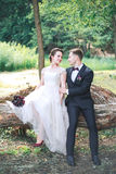 Beautiful happy bride and groom sitting on a log in the park. . Wedding day. Beautiful bride and elegant groom royalty free stock photography