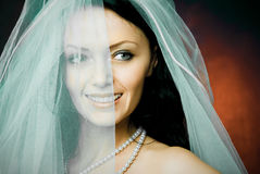 Beautiful happy brunette bride wearing a veil. Studio portrait of a beautiful happy brunette bride wearing a veil Stock Photo