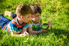 Beautiful happy children, boy brothers, exploring nature with ma. Gnifying glass, summertime. Preschool kids rest in summer holiday camp. Relaxation happy royalty free stock images
