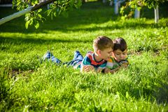 Beautiful happy children, boy brothers, exploring nature with magnifying glass, summertime. Preschool kids rest in summer holiday camp. Relaxation happy royalty free stock images