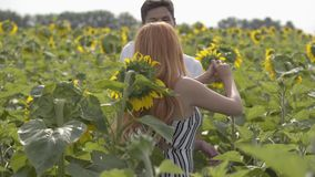 Beautiful happy couple dancing together on the sunflower field. Ginger girl with her boyfriend resting outdoors. Beautiful happy couple dancing together on the stock video