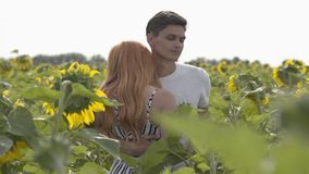 Beautiful fun couple dancing together on the sunflower field, the woman spinning around. Ginger girl with her boyfriend stock video