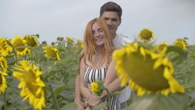 Beautiful happy couple hugging on the sunflower field. Ginger girl with her boyfriend resting outdoors. Connection with stock video