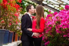 Beautiful happy couple in love kissing royalty free stock photography