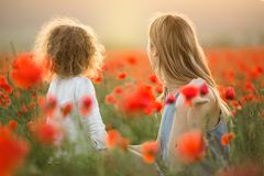 Beautiful smiling child girl with mother are having fun in field of red poppy flowers over sunset lights. Beautiful happy couple mother and cute daughter are stock image