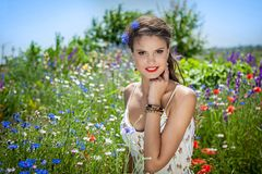 Beautiful  happy female  in the wildflowers Stock Photos