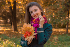 Beautiful happy girl holding autumn leaves close-up. Happy girl holding autumn leaves close-up in an autum park Royalty Free Stock Photo