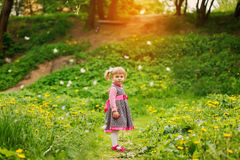 Beautiful  happy girl  playing in a field of Royalty Free Stock Photography