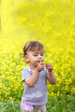 Beautiful happy little baby girl on a green meadow with yellow flowers dandelions on the nature in the park Stock Image