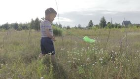 The boy is catching butterflies with a butterfly net. stock video footage