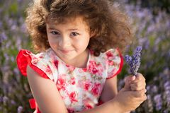 Beautiful happy little girl with bouquet of summer flowers in lavender field royalty free stock images