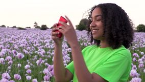 Biracial young woman walking through field of pink poppy flowers taking photographs on her smart phone. Beautiful happy mixed race African American biracial girl stock footage