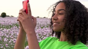 African American biracial girl teenager female young woman in a field of pink poppy flowers taking photographs on her smart phon. Beautiful, happy, mixed race stock footage
