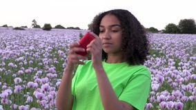 African American girl teenager female young woman walking through field of pink poppy flowers taking photographs for social media. Beautiful happy mixed race stock footage