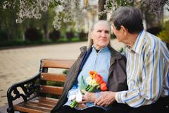 Beautiful happy old people sitting in the autumn park royalty free stock photos