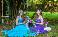 Beautiful happy smiling sisters twins Royalty Free Stock Image