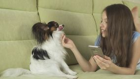 Beautiful happy teenage girl communicating in smartphone and with her dog. Beautiful happy teenage girl having fun communicating in smartphone and with her dog Stock Image