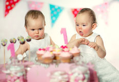 Beautiful happy twins baby on first birthday Stock Images