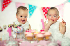 Beautiful happy twins baby on first birthday Royalty Free Stock Photo