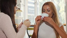 Beautiful happy woman enjoying coffee with her best friend, chatting joyfully. Attractive female drinking hot beverage, talking to her friend at the coffee stock footage