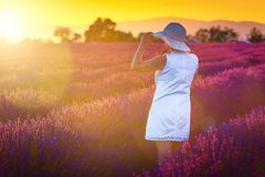Beautiful happy woman enjoying nature in lavender field, Valensole, France. Cheerful young woman in a white dress and straw hat enjoying nature, lavender fields royalty free stock photos