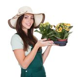 Beautiful Happy Woman Holding Flower Plant Stock Photography