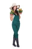 Beautiful Happy Woman Holding Flower Plant Royalty Free Stock Photo