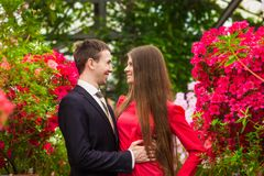 Beautiful happy couple in love smiling royalty free stock photography