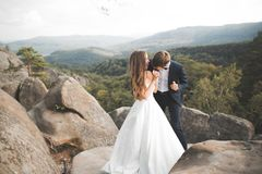 Beautiful happy young wedding couple posing on a background of rock cliff Stock Image