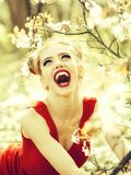 Pretty girl in blossom royalty free stock photography