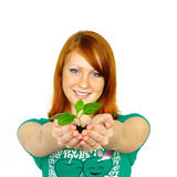 Beautiful happy young woman holding plant. Closeup portrait of a beautiful happy young woman holding plant Stock Photography