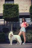 Beautiful happy young woman in shorts with white husky dog Stock Images