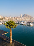 Beautiful harbor in Alicante Stock Photography