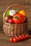 Beautiful harvest. Stock Image