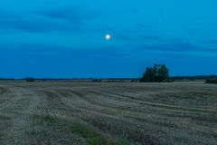Beautiful after harvest field at night. Stock Photography