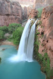 Beautiful Havasu Falls Stock Image