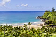 Beautiful Hawaiian Beach Stock Photography