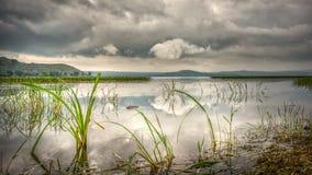 Beautiful Hawassa lake Royalty Free Stock Photo
