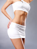 Beautiful healthy female body Stock Image