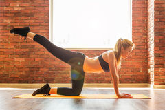 Beautiful healthy fitness woman Royalty Free Stock Photography