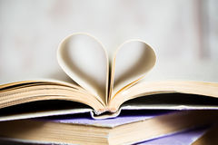 Beautiful heart Royalty Free Stock Photos