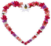 Beautiful heart made of different flowers as a symbol of love Royalty Free Stock Images
