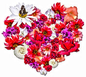 Beautiful heart made of different flowers on white background. Beautiful heart made of different flowers as a symbol of love on white background. Heart consists Stock Image
