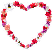 Beautiful heart made of different flowers on white background. Beautiful heart made of different flowers as a symbol of love on white background. Heart consists Royalty Free Stock Photo